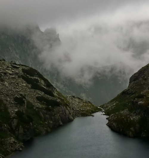 Ciężka Dolina w Wysokich Tatrach #dolina #góry #Tatry