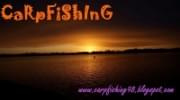 http://carpfishing98.blogspot.com