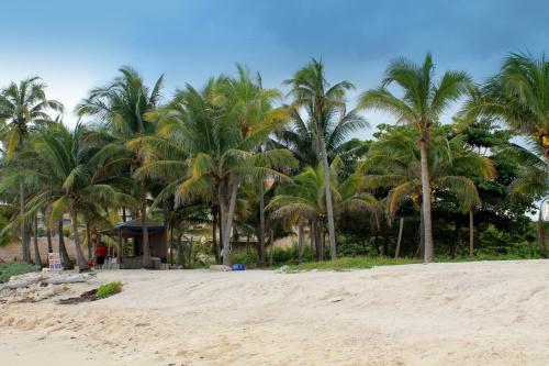 Listpad na Jukatanie #AmerykaŚrodkowa #eksyk #Jukatan