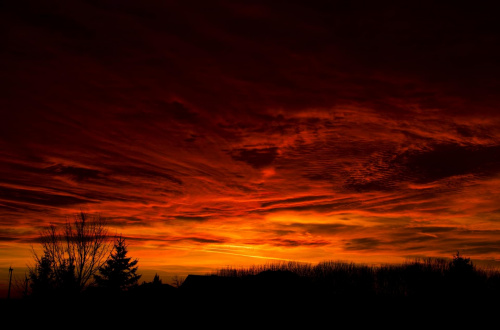 Zachód Słońca #chmury #drewo #Słońce #ZachódSłońca