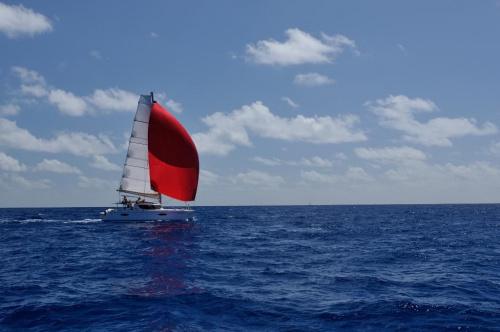 Karaiby #Żeglarstwo #ocean #karaiby #morze #łódź