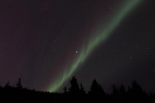 North light