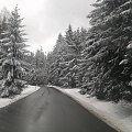 Zima, zdjęcie z zachodniej części Czech. #Zima #drzewa #las #droga
